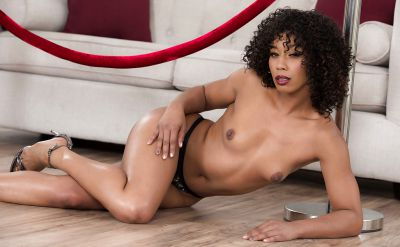 Photo №8 Curly haired brunette Misty Stone stripped naked