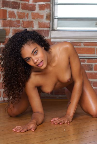Photo №16 Young curly-haired mulatto Scarlit Scandal undressed and posing for the camera