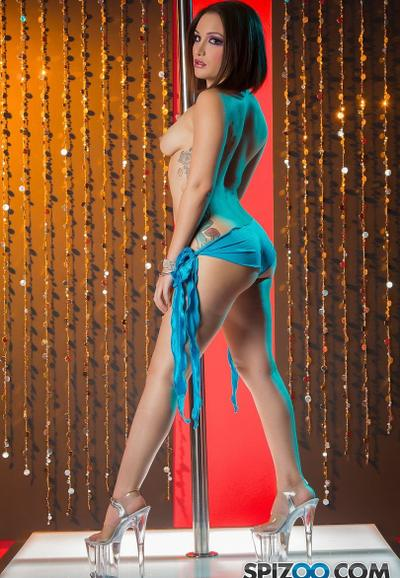 Photo №7 Sexy stripper Gabriella Paltrova takes off her blue lingerie and poses near the pole